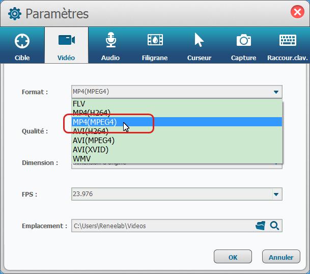Sélectionner le format MP4 pour la vidéo de sortie-Renee Screen Recorder