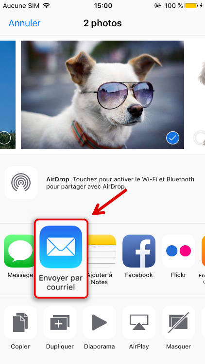 Envoyer les photos d'iPhone par e-mail - Renee iPhone Recovery