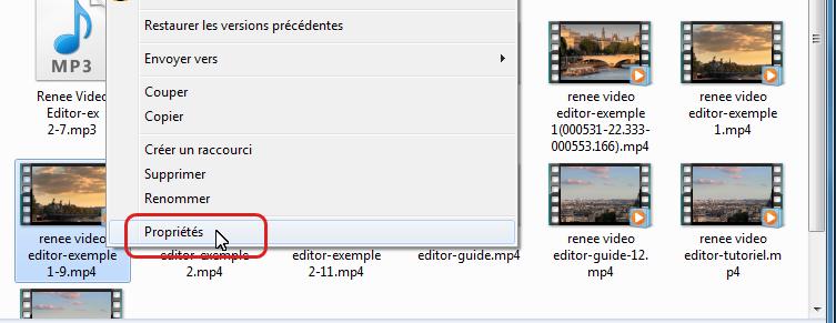 cliquer sur propriétés de la vidéo